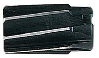 BECK Aufsteckreibahle DIN 219, HSS-E 34 - toolster.ch