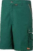 PLANAM Shorts  Canvas 320 grün/grün 2171 M - toolster.ch