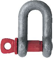 Schäkel Form B 3.25 t - toolster.ch