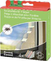 SWISSINNO Fensterfalle für Fliegen 4er-Set, farbig - toolster.ch