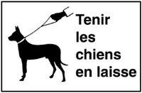 Signaltafel Tenir les chiens Lackiert 40 x 25 cm - toolster.ch