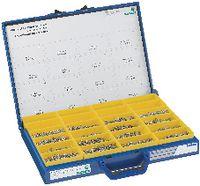 Blechschrauben-Sortiment Stahl einsatzgehärtet 450 HV / verzinkt-blau Typ DS 16, in Blechkasten DS16 - toolster.ch